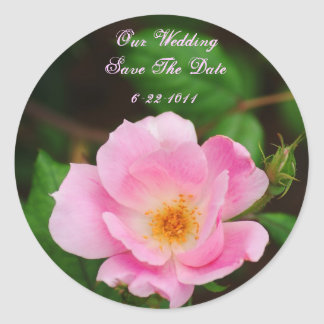 Our Wedding, save the date, pink rose Classic Round Sticker