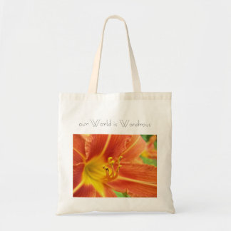 'our World is Wondrous' Tote Tote Bag