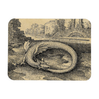 Ouroboros Dragon Sepia Rectangular Magnets