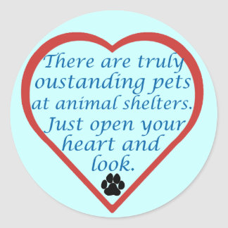 Oustanding Pets Classic Round Sticker