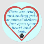Oustanding Pets Round Sticker
