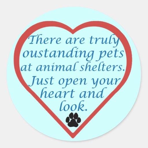 Oustanding Pets Round Sticker