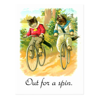 Out for a spin postcard