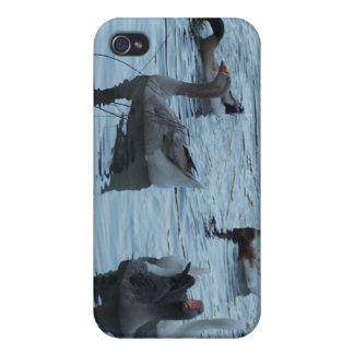 Out for a swim iPhone 4/4S covers