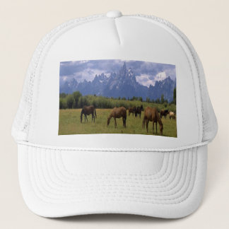 Out grazzing, the Grand Teton Horses, on a hat. Trucker Hat