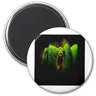 Out of the Darkness Fridge Magnet