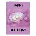 Out of the Mist - pink roses Greeting Card