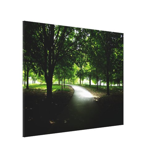 Out of the Shadows Gallery Wrapped Canvas