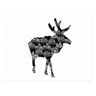 Out of the Woods Moose Postcard