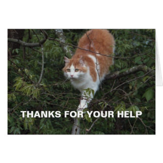 Out On A Limb Thank You Card