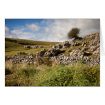 Out on the Dales Greetings Card