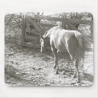 Out to Pasture Horse B&W Mouse Pad