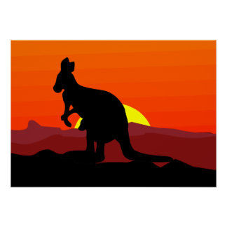 Outback Australian Kangaroo at Sunset Poster
