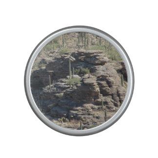 Outcropping rocoso en Tucson Altavoz