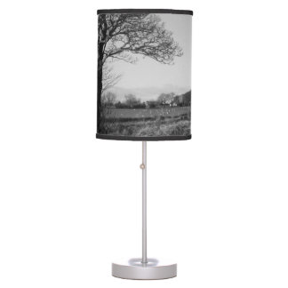 Outdoor Black and White Lamps