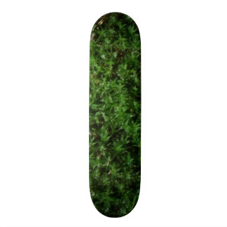 Outdoor Botanical Green Ground Moss Nature Plant Custom Skate Board