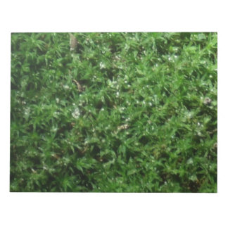 Outdoor Botanical Green Ground Moss Nature Plant Notepad