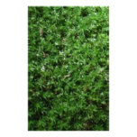 Outdoor Botanical Green Ground Moss Nature Plant Customized Stationery