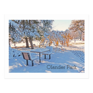 """""""OUTDOOR CHAIRS AND TABLE COVERED IN SNOW/OLANDER POSTCARD"""
