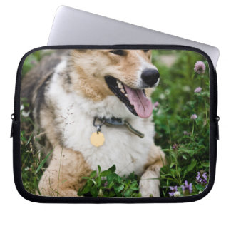 Outdoor portrait of dog lying down in meadow laptop computer sleeve