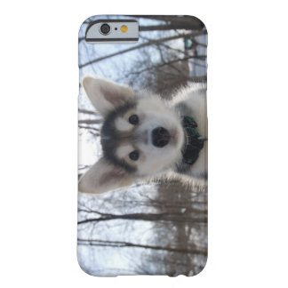 Outdoor portrait of husky dog puppy barely there iPhone 6 case