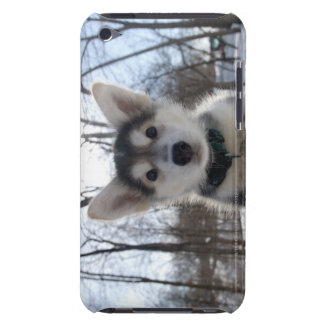 Outdoor portrait of husky dog puppy iPod Case-Mate case