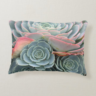 Outdoor Succulent Pillow, Blue Echeverias Decorative Pillow