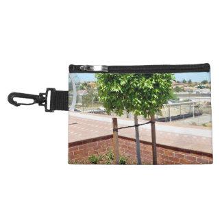 Outdoor topiary in brick planter accessories bag