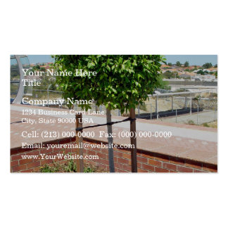 Outdoor topiary in brick planter business card