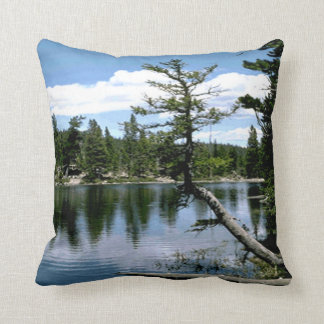 Outdoors In The Woods Throw Pillow