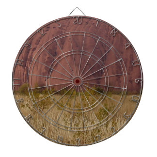 Outdoors Nature Dart Boards