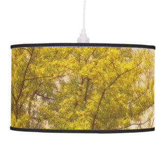 Outdoors TPD Ceiling Lamps