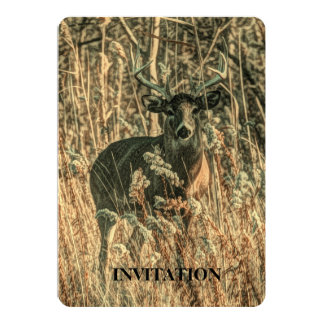 outdoorsman wilderness Camouflage whitetail deer Card