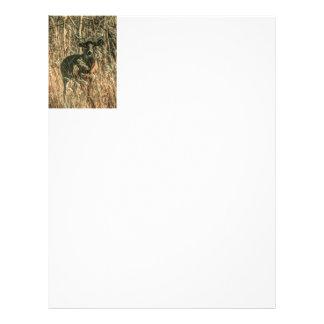 outdoorsman wilderness Camouflage whitetail deer Letterhead