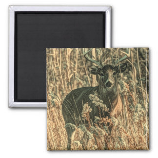 outdoorsman wilderness Camouflage whitetail deer Magnet