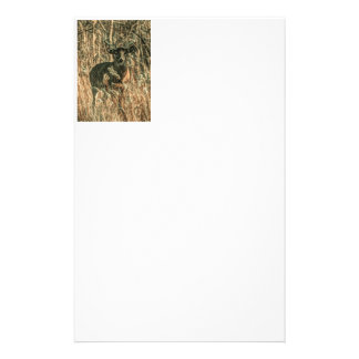 outdoorsman wilderness Camouflage whitetail deer Stationery