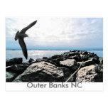 Outer Banks NC Postcards