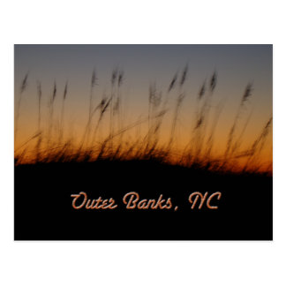 Outer Banks NC Sea Oats and Dunes at Sunset Postcard