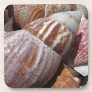 Outer Banks Seashells, NC Cork Coasters