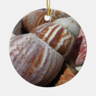 Outer Banks Seashells, North Carolina Ornament