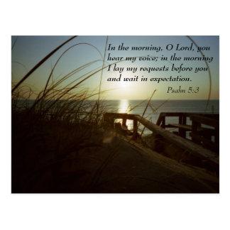 Outerbanks Morning 4 Postcard