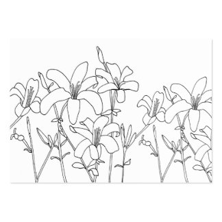 Outline Drawing Lily Flowers Coloring Cards Business Card Templates