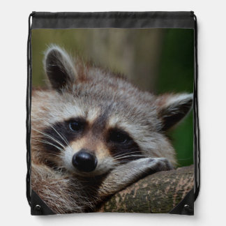 Outrageously Cute Baby Raccoon Drawstring Bags