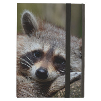 Outrageously Cute Baby Raccoon Cover For iPad Air