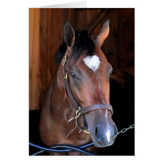 Outrun by Medaglia d'Oro - Indian Vale Card