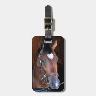 Outrun by Medaglia d'Oro - Indian Vale Luggage Tag
