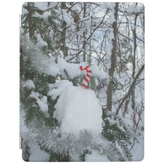 Outside Candy Cane Decoration iPad Cover