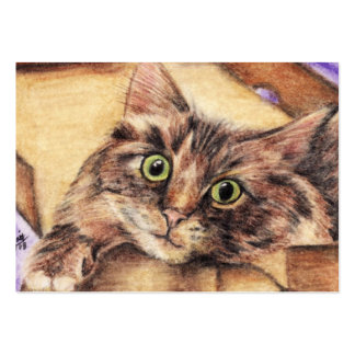 Outside the Box (Cat) ACEO Art Trading Cards Large Business Cards (Pack Of 100)