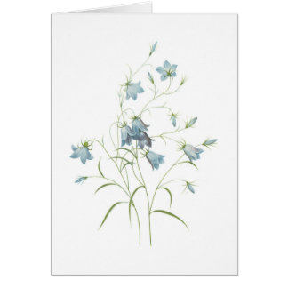 Outstanding  Gifts Greeting Card