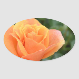oval sticker with orange rose